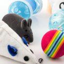 cat-toys (1)